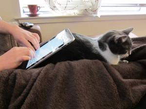 iPad Stand Cat